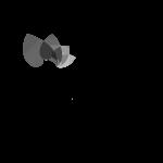 logobiobeau